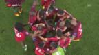 Video «Frankreich - Portugal: Die Live-Highlights» abspielen