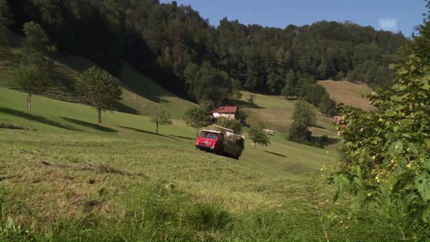 Video «Ein Tag im Juli» abspielen