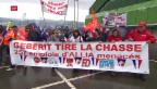 Video «Luzerner Zwangsferien, Franzosen auf den Barrikaden, Militärschau» abspielen