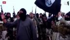 Video «IS-Kämpfer vor deutschem Gericht» abspielen