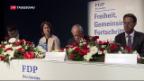 Video «FDP will bilaterale Verträge mit der EU beibehalten» abspielen