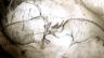 Video «Faszinierende Höhlenmalerei» abspielen
