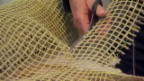 Video «Bcomp: Ein Start-up setzt auf die Wiedergeburt von Flachs» abspielen
