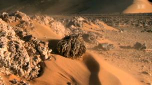 Video «Sahara – Mächtiges Meer ohne Wasser» abspielen