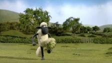 Link öffnet eine Lightbox. Video Shaun das Schaf (1): Gemüsefussball abspielen