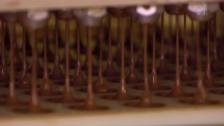 Link öffnet eine Lightbox. Video Schokolade – die bittersüsse Globalisierungsstory abspielen.