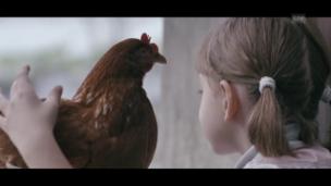 Video «The Chicken (D/CRO 2014)» abspielen