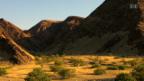 Video «Kalahari - Im Bann der roten Wüste» abspielen
