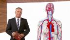 Video «Augmented Reality: Einkäufe Spitäler» abspielen