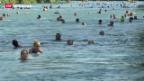 Video «Der heisseste Tag des Jahres» abspielen