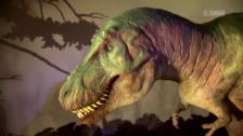 Link öffnet eine Lightbox. Video Tödliche Dinosaurier abspielen
