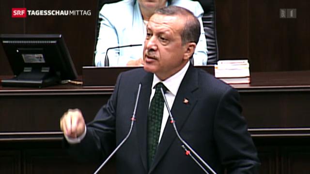 «Erdogan will Proteste kriminalisieren»