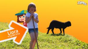 Video «Liora aus dem Kanton Graubünden und ihr Schaf Balthasar» abspielen