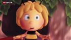 Video «Der überraschende Ursprung der Kult-Biene» abspielen