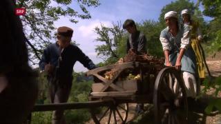 Video «Dietschis auf dem Markt, Marktabhängigkeiten im Mittelalter» abspielen