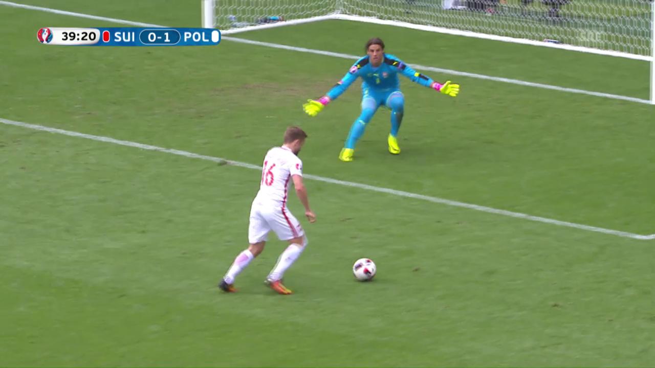 Il 0:1 tras Blaszczykowski per la Polonia