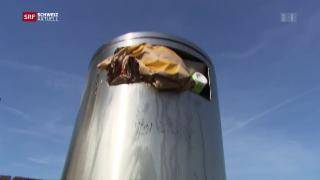 Video «Gebühren auf Plastik-Verpackungen in der Stadt Bern » abspielen