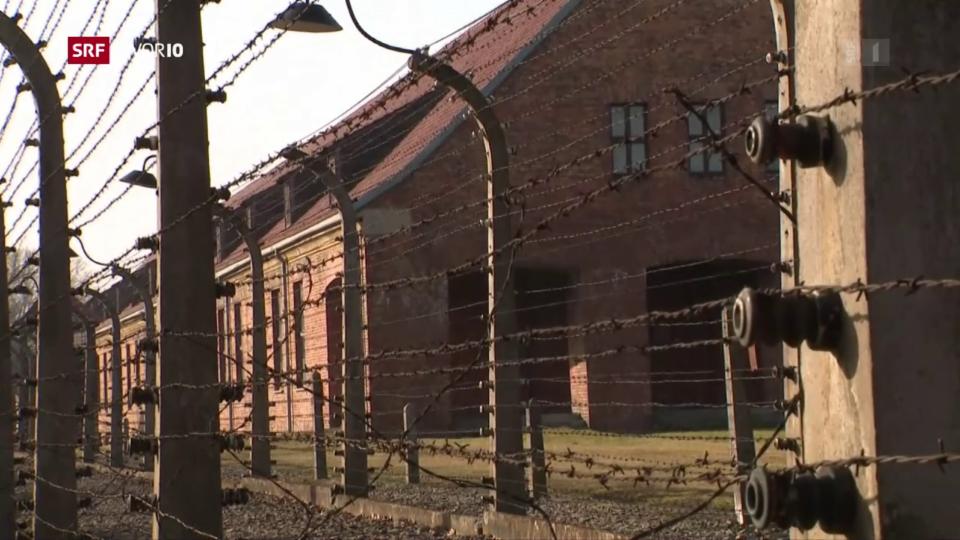 Aus dem Archiv: Gedenken an die Befreiung von Auschwitz