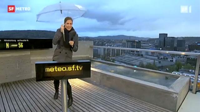 Windspiele auf dem Meteo-Dach