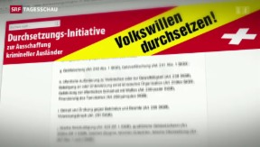 Video «Umsetzung der Ausschaffungsinitiative » abspielen
