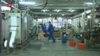 Video «Explosives Geschäft» abspielen