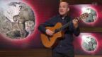 Video «Auftritt: Reto Zeller» abspielen