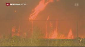 Video «Mehr Schäden durch Naturkatastrophen » abspielen