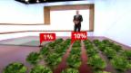 Video «Augmented Reality: Gemüseanbau» abspielen