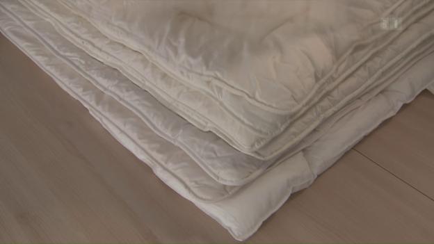 naturduvets im test gute alternative zu daunen sendungen srf. Black Bedroom Furniture Sets. Home Design Ideas