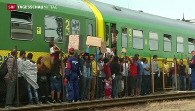 Video «Zug in Bicske: Migranten widersetzen sich» abspielen