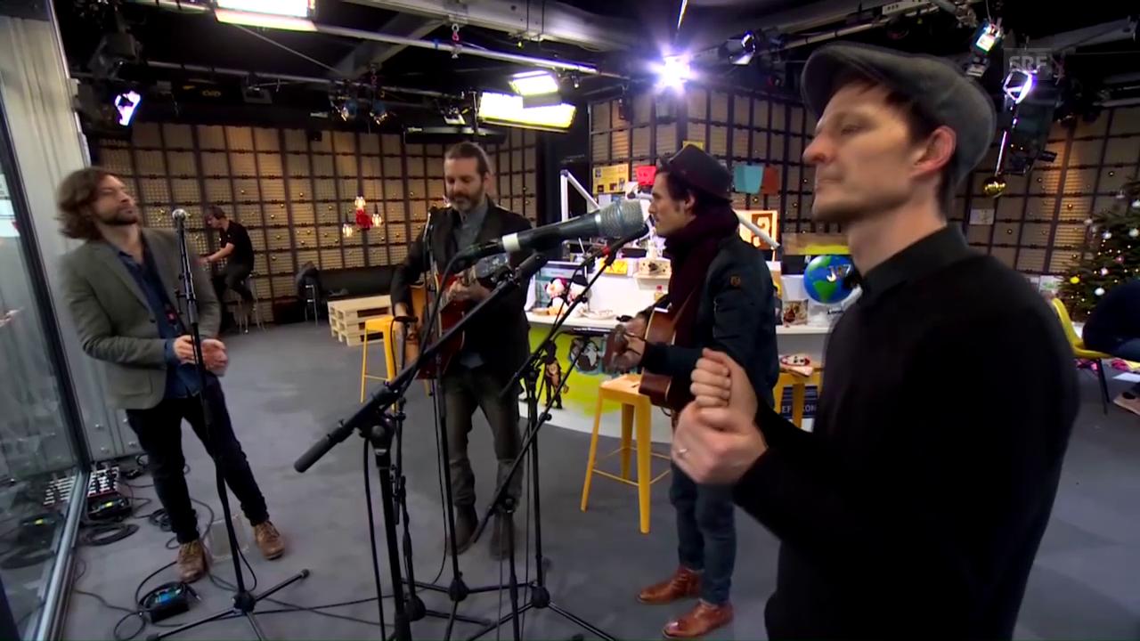 Lovebugs mit «Land Ho!»