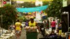 Video «Das Warten in Brasilien hat ein Ende» abspielen