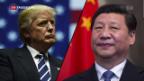 Video «Gratwanderung für Trump mit China» abspielen