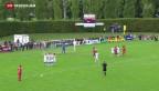 Video «FC Zürich mit knappem Sieg» abspielen