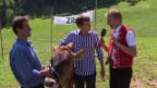 Video «Wettbewerb mit Nicolas Senn - Teil 1» abspielen