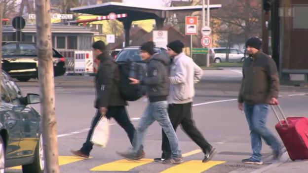 Video «Der Asylreport» abspielen