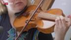 Video ««Schweizer» Tropenholz im Test» abspielen