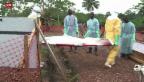 Video «Ebola-Epidemie kaum zu stoppen» abspielen