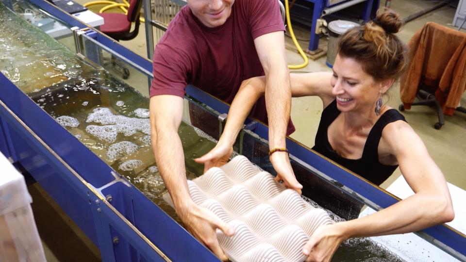 Problem: Korallensterben – Lösungsidee: künstliche Riffe