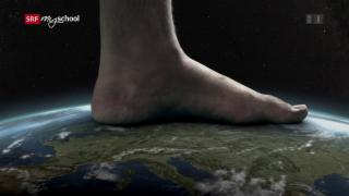 Video «Quarx: Bottom hautnah (1/26)» abspielen