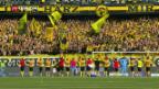 Video «Fussball» abspielen