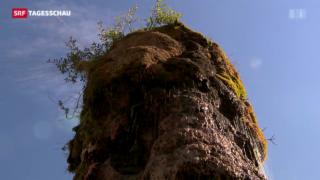 Video «Berner Oppenheim-Brunnen – von nackt bis überwachsen » abspielen
