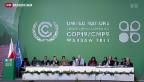 Video «Kaum Einigung an der Klimakonferenz in Warschau» abspielen