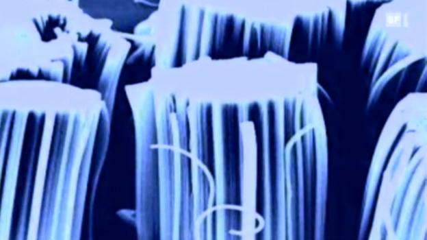 Video «17.05.11: Nano in Produkten: Mögliche Gefahren» abspielen