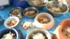 Video «Das Geschäft mit Tier-Diätfutter» abspielen