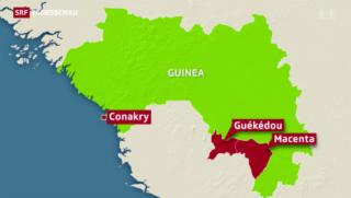 Video «Ebola-Fieber in Guinea » abspielen