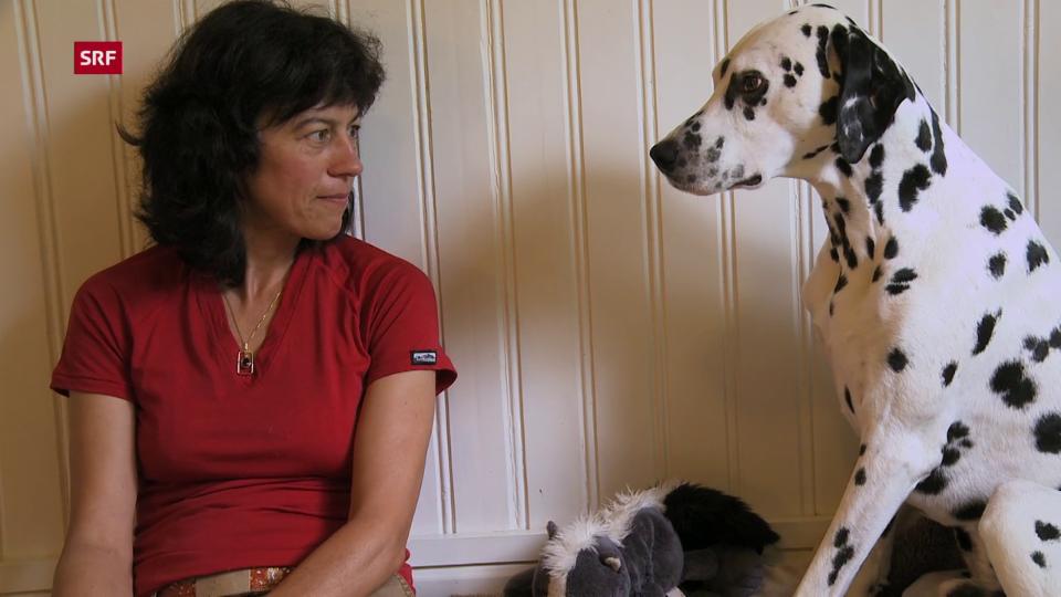 Mit Tieren sprechen