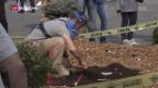 Video «Tag der Landminen» abspielen