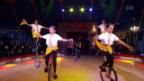 Video «Kinderzirkus Biber: Spitzensportler setzen sich für Junge ein» abspielen