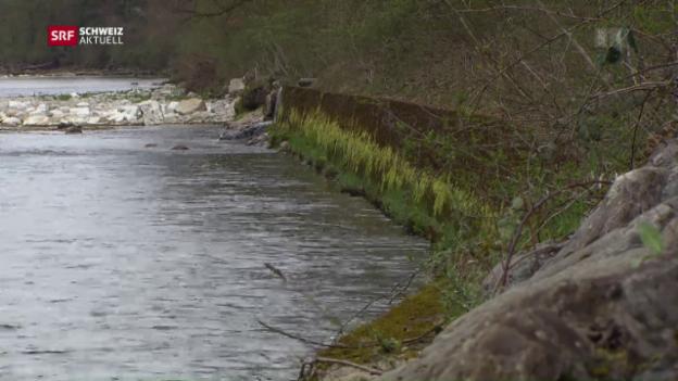 Video «Hochwasserschutz» abspielen